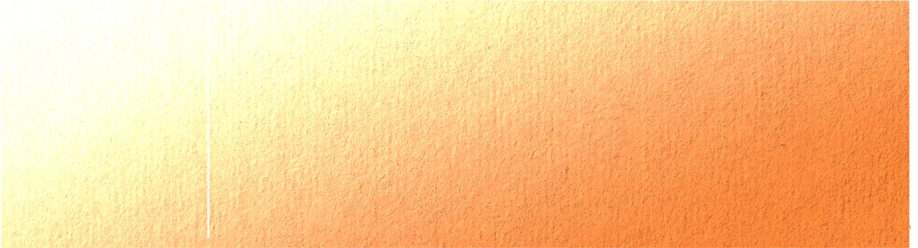 Negev Inside